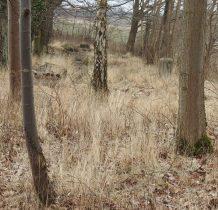 Śliwice-wśród drzew nagrobki