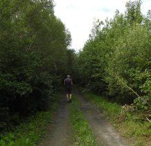 Kopysno-droga do wioski