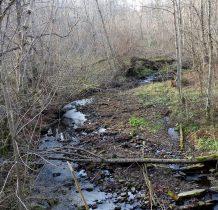 od ruin wracamy na drogę i dochodzimy do potoku Hulski