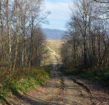 przed nami droga do wsi Krywe