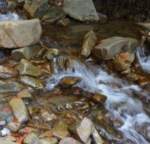 stad można wzdłuż potoku wyjść na Magurkę