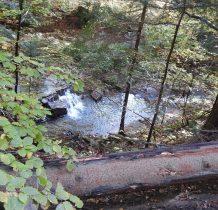 idziemy na dół z potokiem