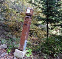 drewnianymi słupkami oznaczono ścieżkę edukacyjna