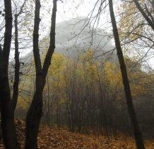 schowane we mgle