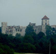 pierwszy drewniany zamek powstał w tym miejscu ok.1319r