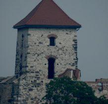 Wieża Nawojowa-maksymalne zbliżenie