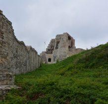 wśród zamkowych ruin