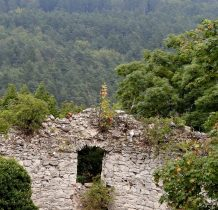ruiny się zielenia
