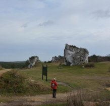 skały Grzędy Mirowskiej