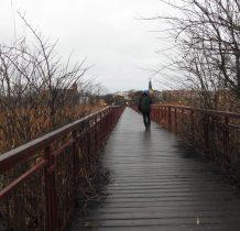 Żółcino-dochodzimy do mostu-kładki przez Zatokę Karpinka