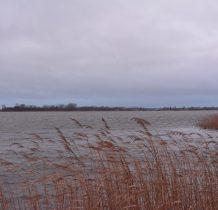 Żółcino-widok na Wyspę Chrzaszczewska