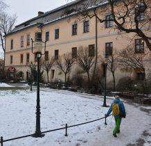muzeum mieści się w pałacu Laryszów-XVIII wiek