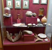 zbiory muzealne