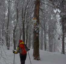 leskowiec-beskid-maly-2019r-734-2019-01-12-11.10.40-dsc_6291