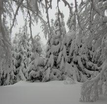 piękna zima nam towarzyszy