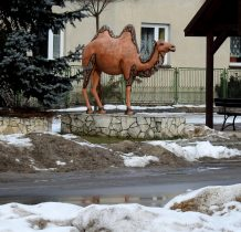 Chechło-pomnik wielbłada