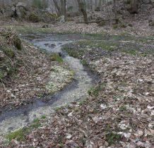 wszędzie meandruja potoki