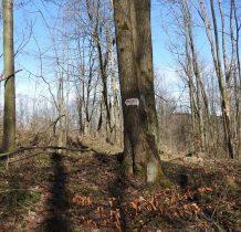 idac niebieskim-łemkowskim szlakiem spotykamy slady dawnych chałup