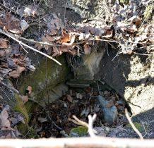 pozostałości studni