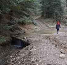 dochodzimy do miejsca gdzie potok przecina drogę-czas na nas,trzeba wracać