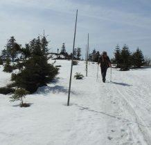 przydotowane tory do biegania więc śnieg ubity