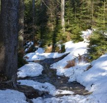 pokonujemy strumyki topniejacego śniegu