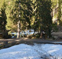 scieżka przez las docieramy do Czarnego Potoku