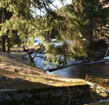 zasilaja rzekę liczne spływajace z gór potoki