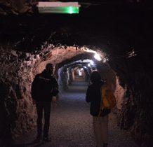 najwiekszy rozkwit górnictwa złota przypadł na XVI wiek
