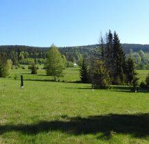 to już tereny wyludnionej wsi Wrzosówka