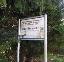 gory-zlote-borowkowa-2019-05-18_09-35-58