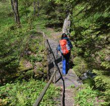 malowniczym mostkiem i ścieżka