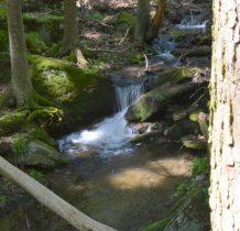 a potok szumi obok