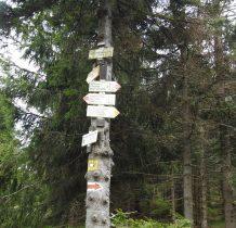 stad po czeskiej stronie czerwonym szlakiem można wyjść na Śnieżnik