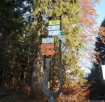 9.dalej zielonym szlakiem granicznym na Rudawiec