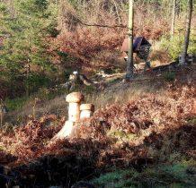 10. rzeźbione grzyby giganty