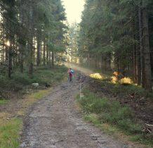 17. zostawiamy schronisko i wchodzimy w las widoczna droga