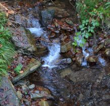 62. w zieleni szumi woda