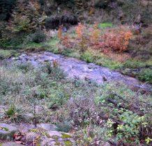 potok Kamienica