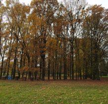 park przy dawnej szkole