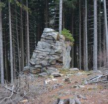 małe drzewka na skale