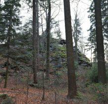 ukryte w lesie
