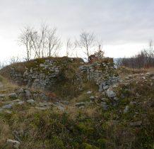 kamienie z zamku były wykorzystywane jako budulec