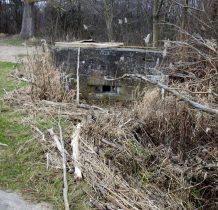 ruiny bunkra z II wojny światowej