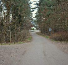 przez las docieramy do Mikoszewa