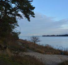 ścieżka prowadzi nas wzdłuż Wisły przy samym brzegu