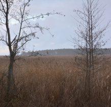 bagna otaczajace Jezioro Karaś