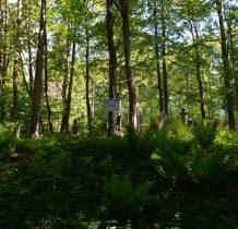 nieco powyżej zabytkowy cmentarz parafialny