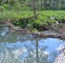 woda szuka ujść bocznych tworzac małe spady