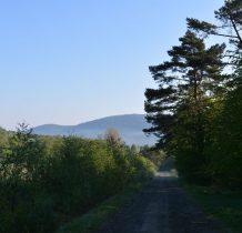 opuszczamy zielony szlak i wyraźna droga idziemy w kierunku św.Góry Jawor